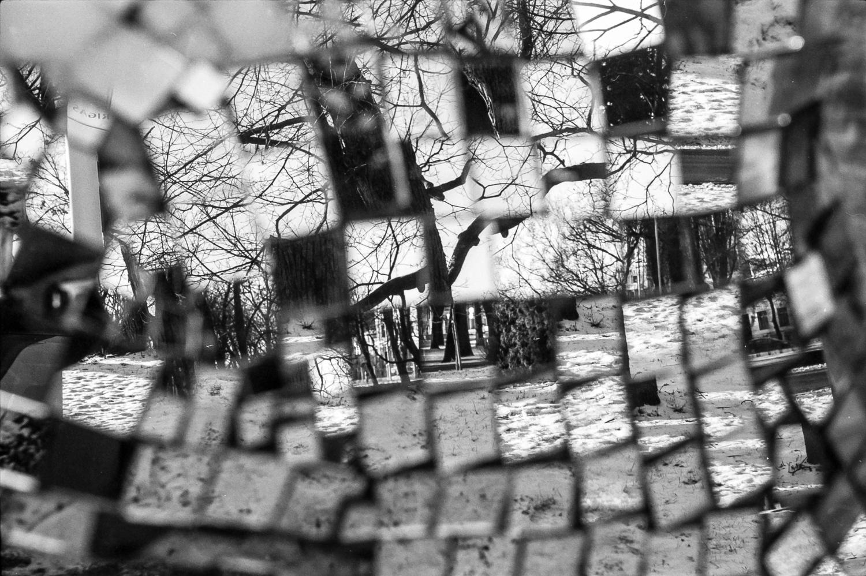 ©IvarsKukainis